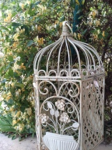 The detail of an old birdcage set against a highly-scented honeysuckle on the edge of the terrace