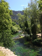 The vivid greens of Fontaine de Vaucluse