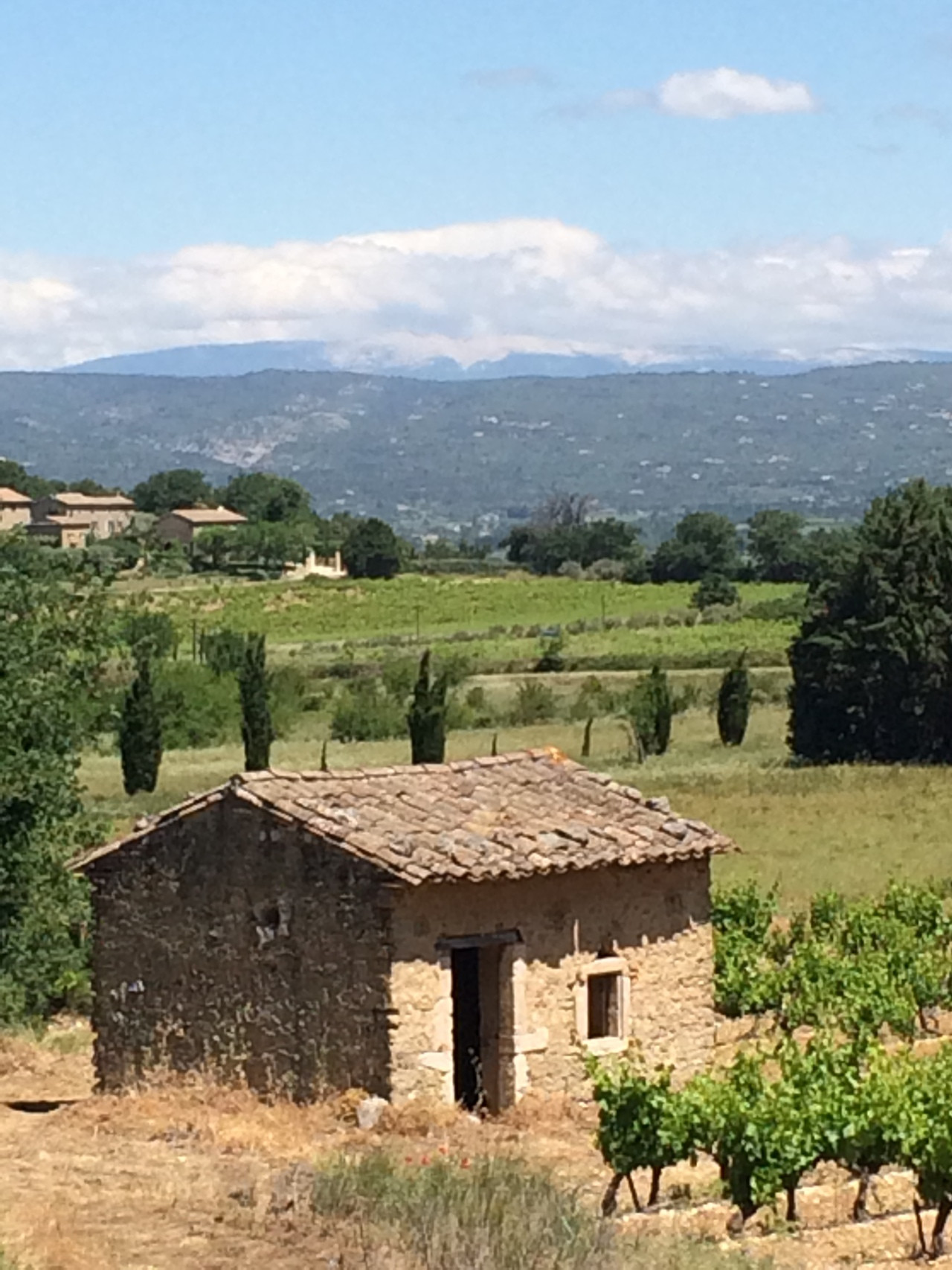 Two Weeks in Provence – Day 11 – One of Mum's 10 minute walks.