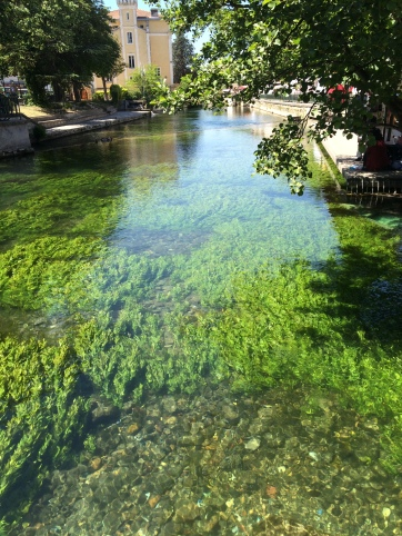 Incredible underwater colours of the Sorgue at l'Isle Sur La Sorgue