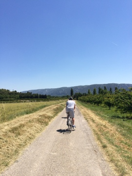Exercise isn't a chore - cycling back with the Luberon rising in the distance