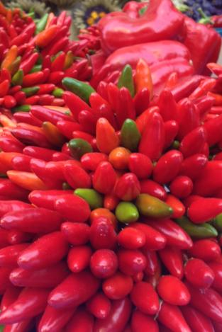 Bright chillies