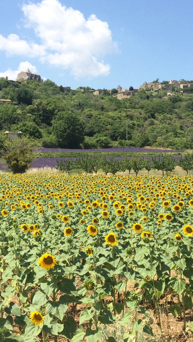 Beyond the Veloroute – cycle #6 from Sade to Saignon