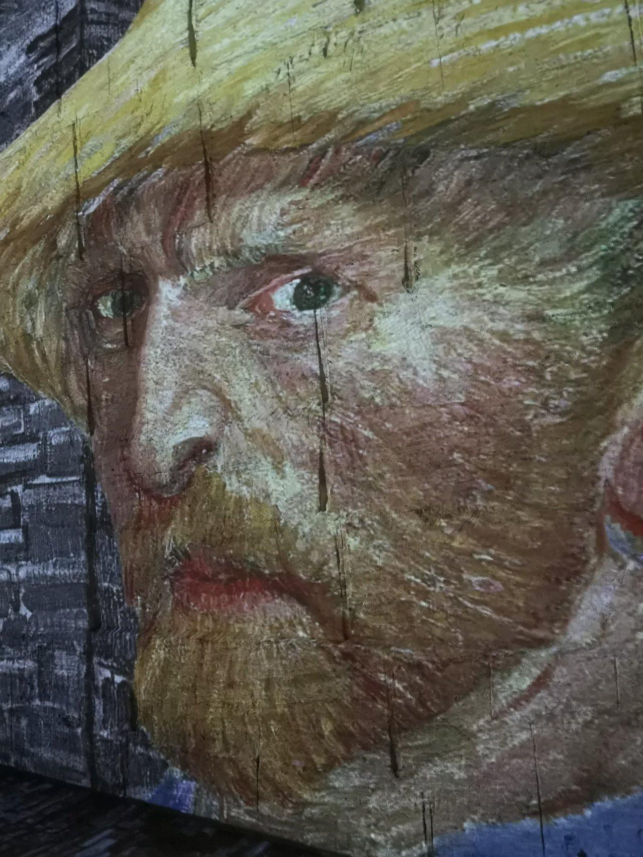 Vincent Van Gogh – Les Carrières deLumières.
