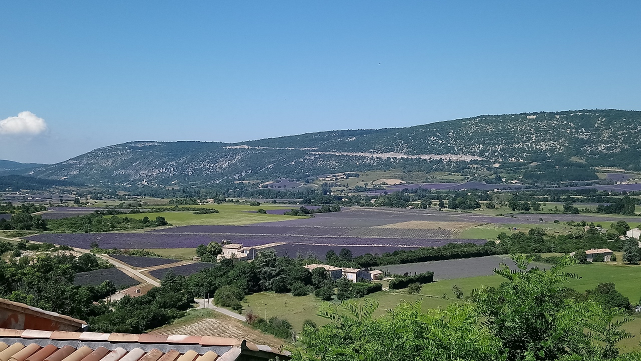 Pottering in Provence #1